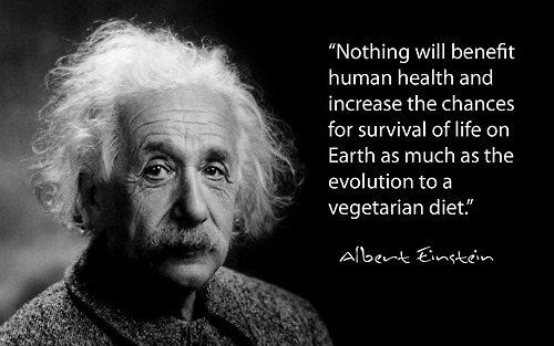 Albert-Einstein-Nothing-will-benefit-human